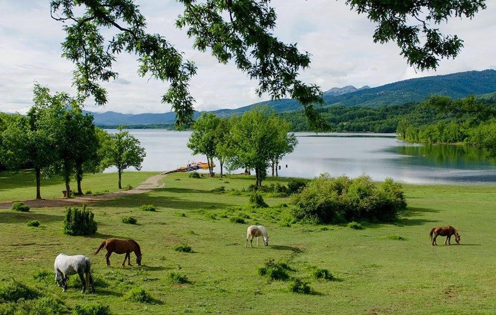 Séjour Grèce continentale : Lac